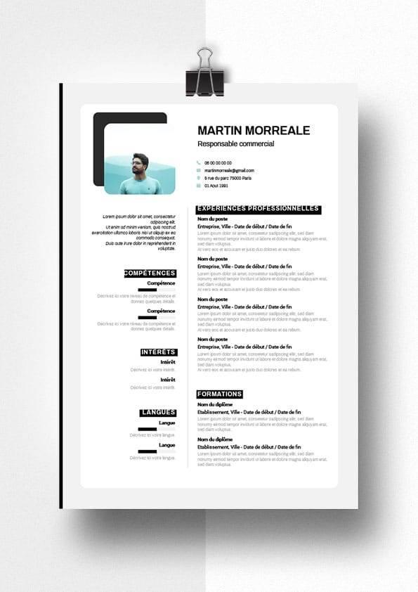 martin modele cv